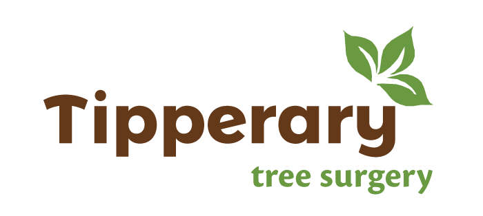 Tipperary Tree Surgery, Midlands, Ireland