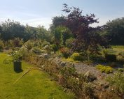 Garden Maintenance Tipperary Landscaping