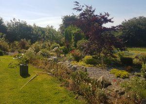 Garden Maintenance Tipperary Landscaping